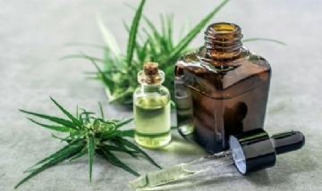 Derribando mitos: Las diferencias entre fumar marihuana y utilizar aceite de cannabis medicinal