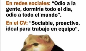 En redes sociales / en el CV