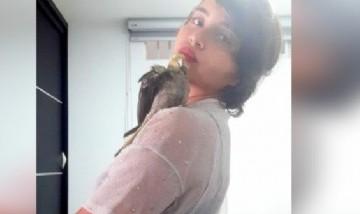 Lore y su cacatúa desde Bucaramanga, Colombia.