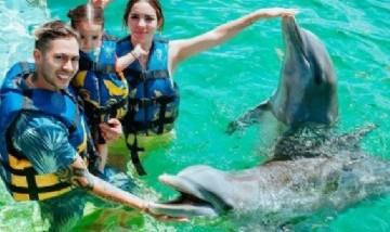 Allegra y sus papis nadando con delfines, México