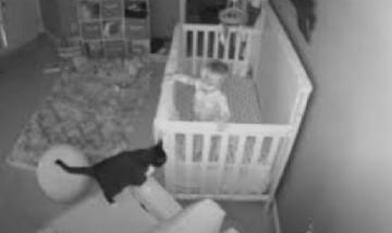 Una cámara de seguridad graba la insólita 'conversación' entre una gata y un bebé durante la noche