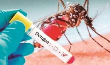 En medio del coronavirus confirmaron el mayor registro de casos de dengue en la historia